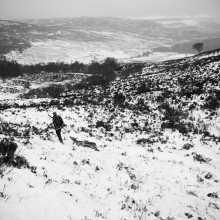Wildland-journey-4
